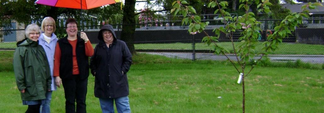 Carnahan Park Tree Planting, May 8, 2014 (1)