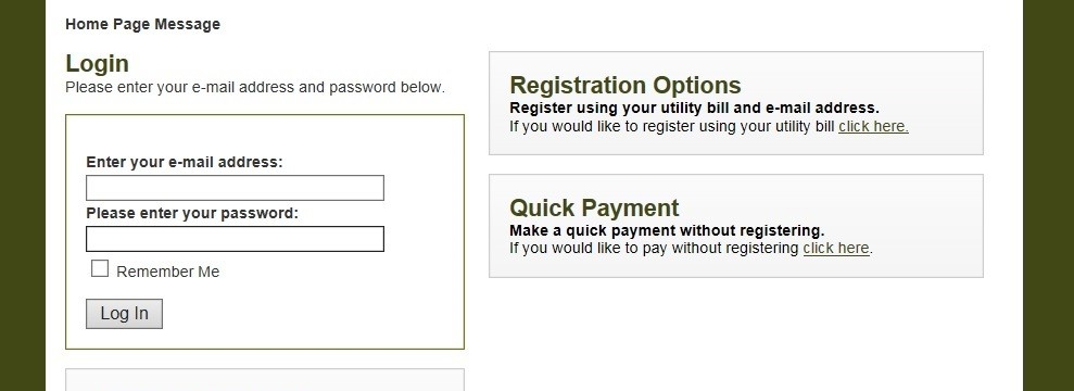 Online Payment Registration Page