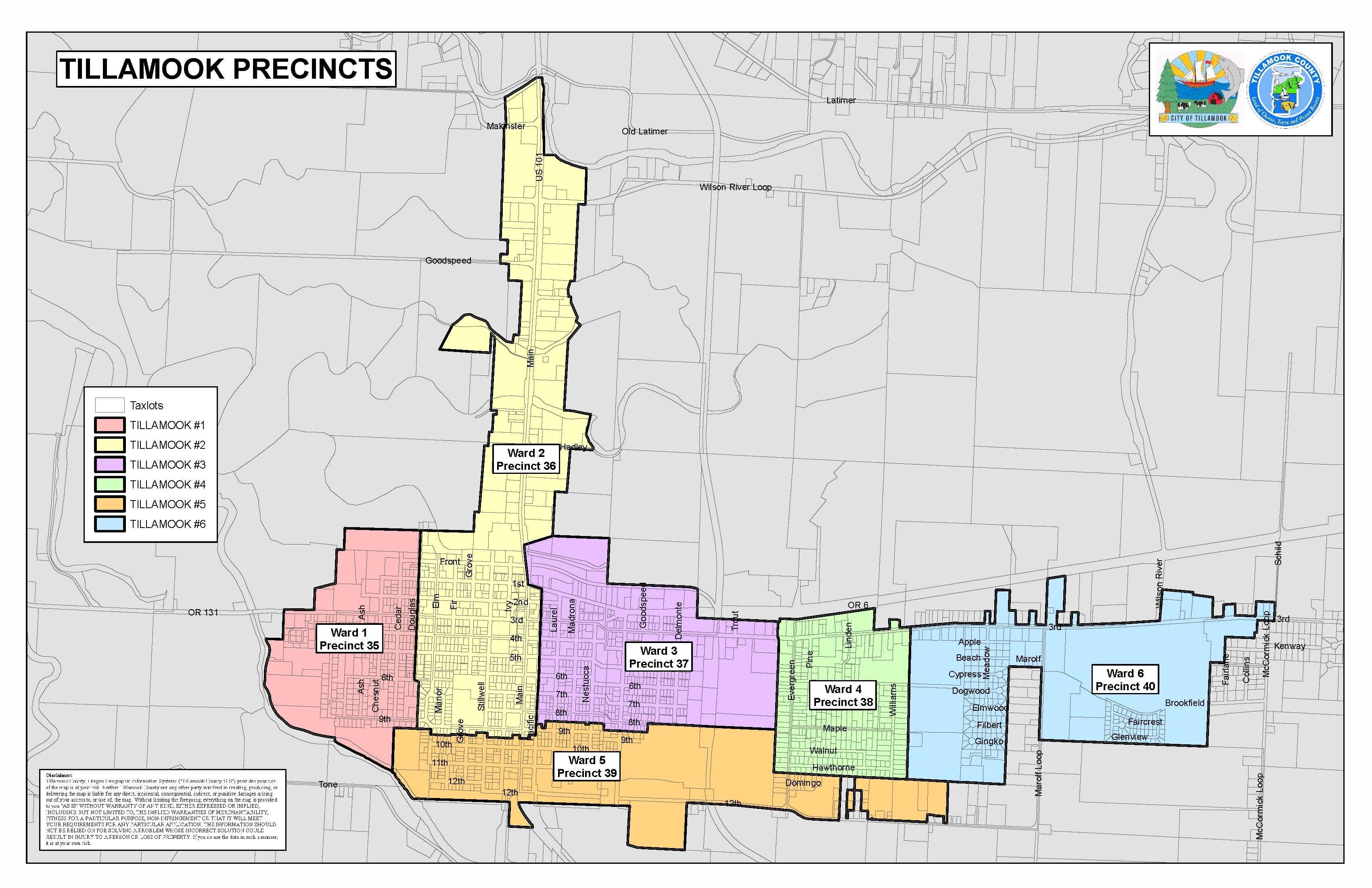 Tillamook Precincts 2010 (in color)