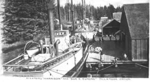 Ships at Hoquarton Docks