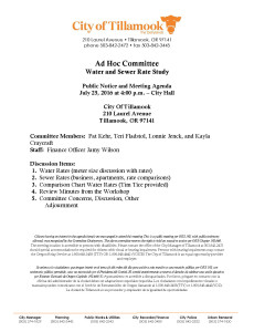Ad Hoc Committee.pdf July25th